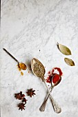 Spoons with assorted spices on a marble background
