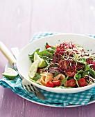 Gemischter Salat mit Räucherlachs und Sprossen