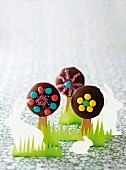 Chocolate & marshmallow cake pops
