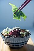 Seetang-Salat im Schälchen mit Essstäbchen (Asien)