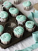 Chocolate cupcakes with mint-coloured frosting