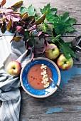 Herbstliche Apfelsuppe mit Balsamico (Kanada)