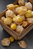 Physalis in a wooden box