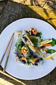 Bunte Sommerrollen mit Gemüse (Asien)