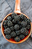Blackberries in an orange saucepan