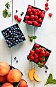Himbeeren, Blaubeeren, Erdbeeren und Nektarinen in Pappschälchen