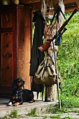 A hound, backpack, gun and pair of binoculars in front of a hunting lodge