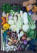 Gemüsevielfalt der kalten Jahreszeit (Draufsicht)