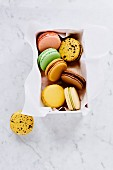 White box with seven macarons of various taste