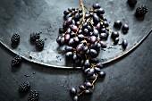 Stillleben mit blauen Weintrauben und Brombeeren auf altem Metalluntergrund