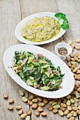 Boiled catalogna chicory salad and broad beans