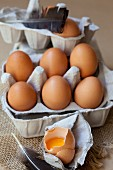 Fresh organic eggs in an egg box