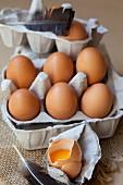 Frische Bio-Eier im Eierkarton