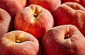 Fresh peaches from Lancaster, Pennsylvania, USA