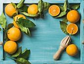 Frische Orangen mit Blättern und Zitruspresse aus Holz auf blauem Holztablett
