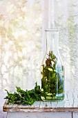 Kräutertee mit frischer Minze in Glaskaraffe auf altem Holzhocker vor Fenster