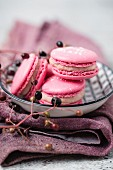 Macarons with an elderberry filling