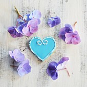 Heart-shaped biscuits decorated with blue and white icing and surrounded by flowers