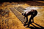 Making Mud Bricks,Brazil