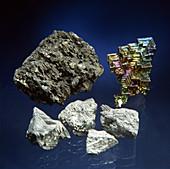 Nitrogen Family Elements