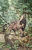 Eocene Mammals