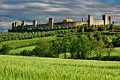 Wheat Field and Distant Monteriggioni