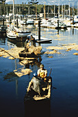Oil Spill Cleanup,Santa Barbara,1969
