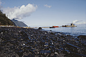 Oily Beach After Exxon-Valdez Spill,USA