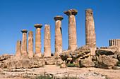 Temple of Hercules,Sicily