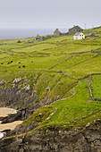 Farm,Slea Head,Ireland