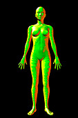 Faceted Female Body