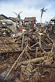 Typhoon Nina Aftermath