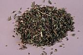 Germander Herb
