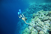 Child snorkelling on coral reef