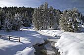 Round Valley Creek During Winter