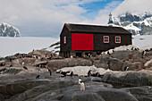 Historic Antarctic Base