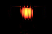 Glowing Filament (2 of 3)