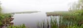 Hart Pond and Beaver Dam,CT