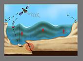 Tsunami Warning Diagram