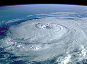 Hurricane Elena