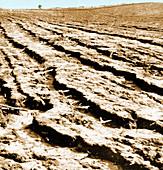 Dust Bowl Erosion