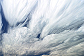 Time-Lapse Clouds