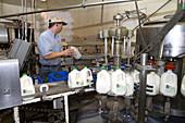 Stoker Milk Company's Bottling Plant
