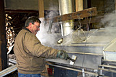 Worker Boiling Maple Sap in a Sugar Shack