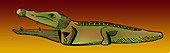 Ancient Egyptian Toy Crocodile,500 BC