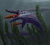 Mosasaur,Illustration