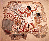 Ancient Egyptians Hunting