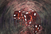 Roll of the Dice,Concept,illustration