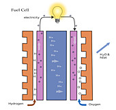 Inside of a Fuel Cell,illustration