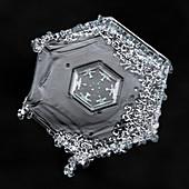 Hexagonal Snowflake